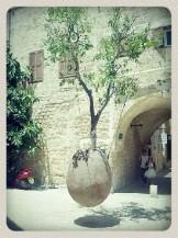 Po smrti krásným stromem